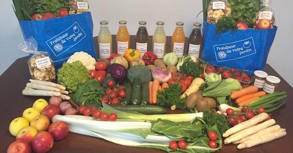 Vente Directe De Fruits Et Legumes Fraicheur De Votre Jardin En